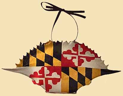 Maryland Flag Crab Shell
